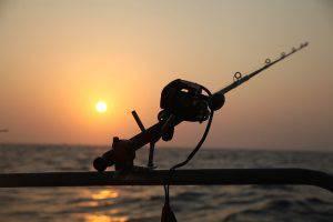Vadászati és Halászati Feltételek